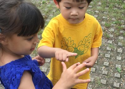Oak Tree Pre-School Nursery - Exploring Nature